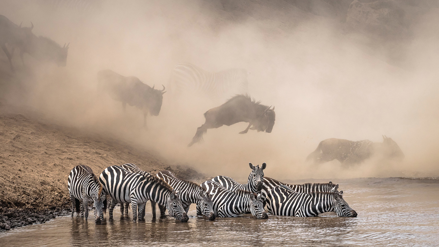 JUNE WINNER the greatest maasai mara photographer of the year