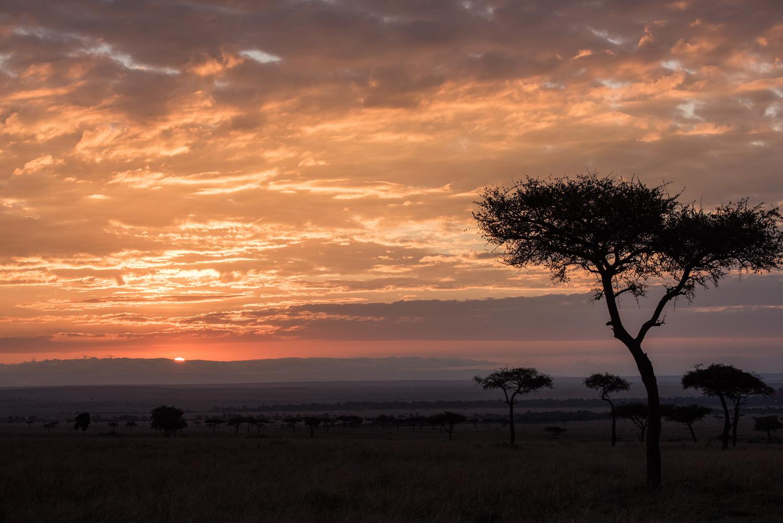 Maasai mara sunrise
