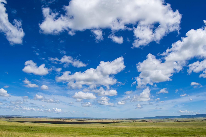 Maasai Mara Landscape boader