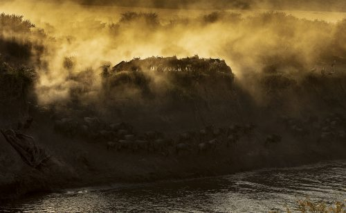 A dramatic and dusty river crossing