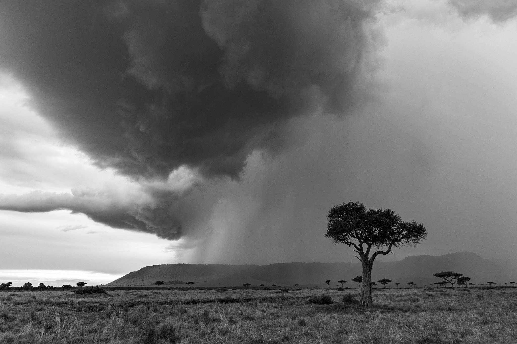 Rain on the escarpment
