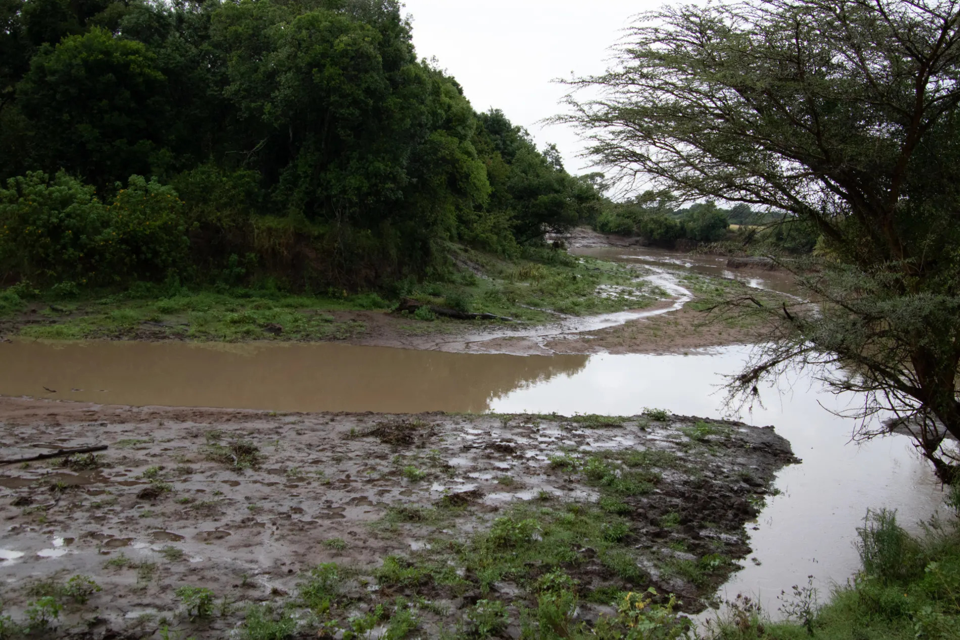 Mara River Empty
