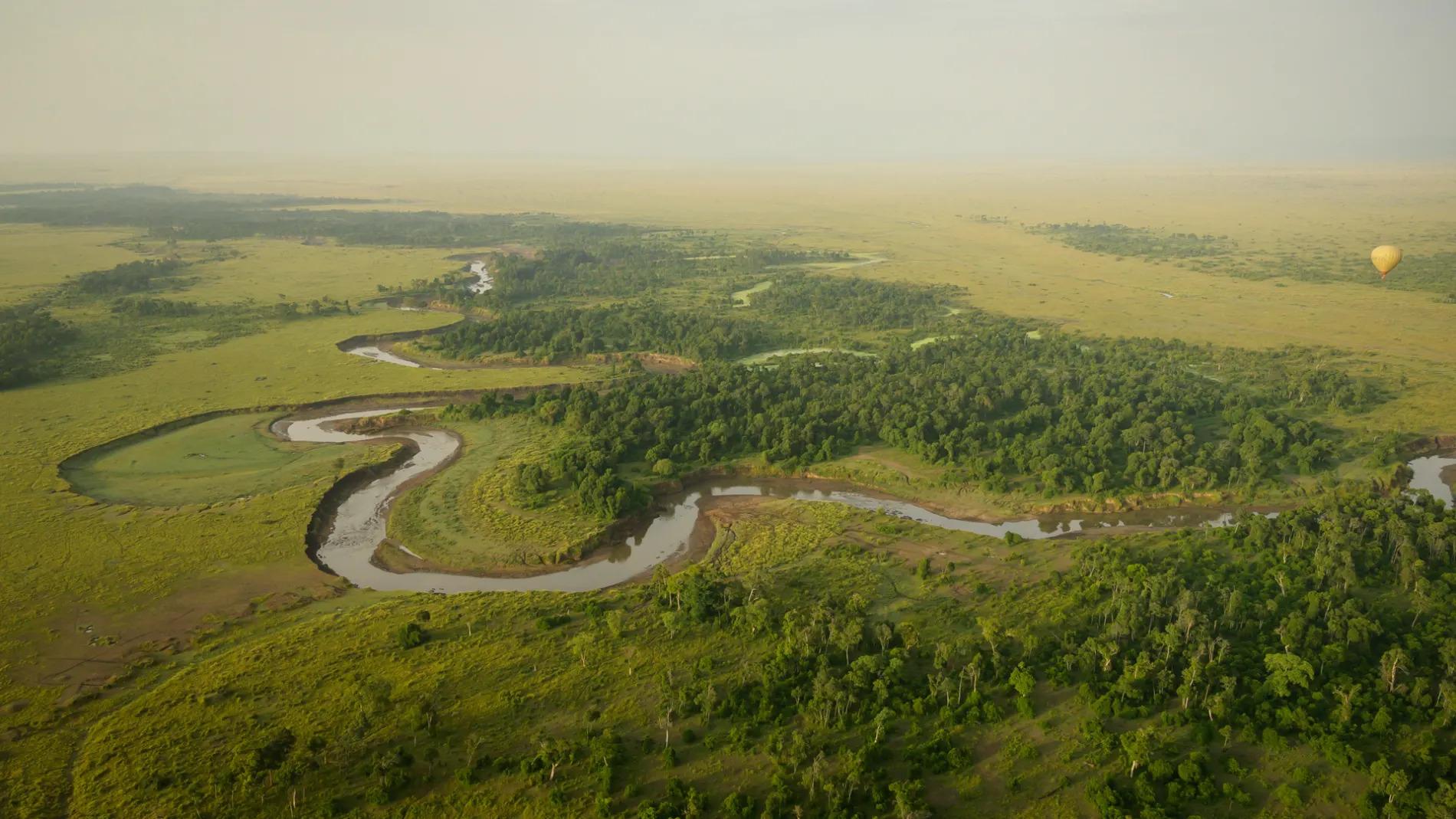 Mara River aerial