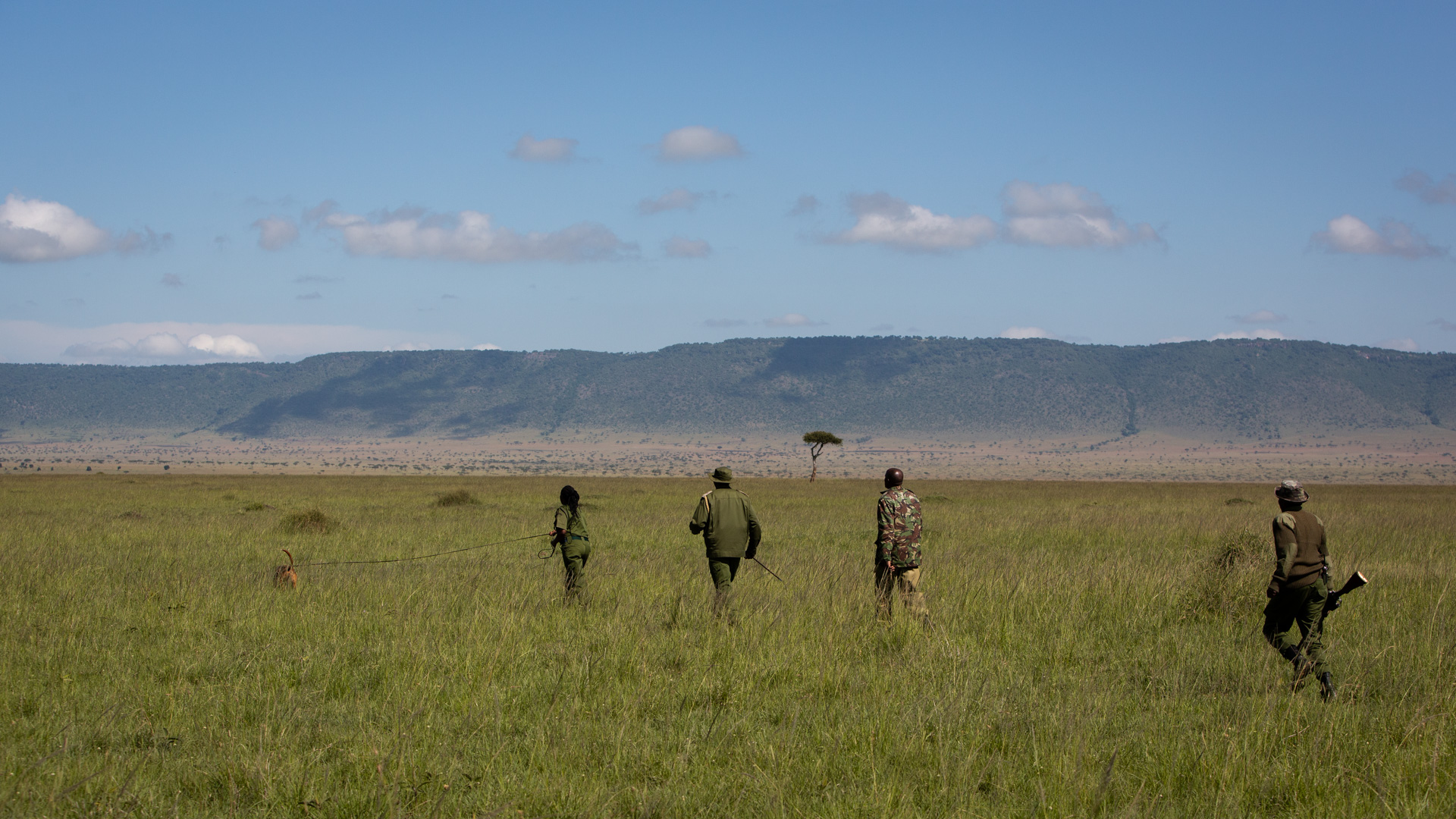 canine unit, silent heroes, mara conservancy