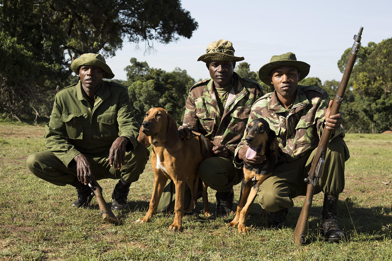 Sniffer dogs rangers