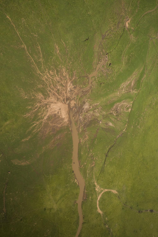Mara from above tree of life