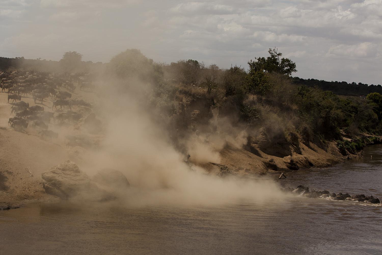 Great Migration Crossing Maasai Mara 2