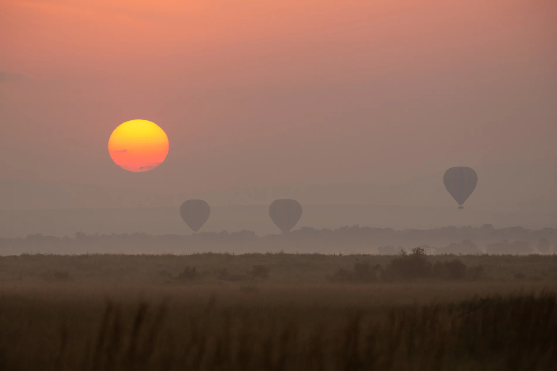 Hot air balloons sunrise