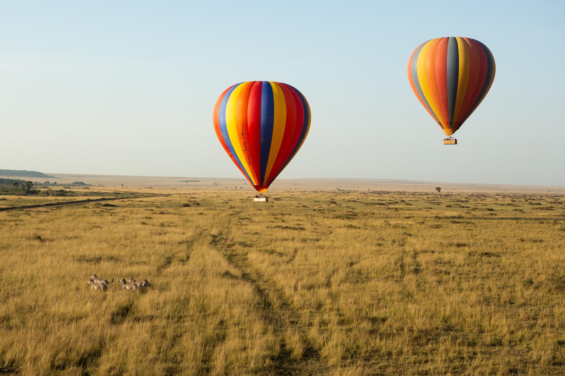 Balloons and Zebra