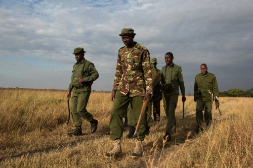 The anti-poaching unit has made a marked impact in the years that it has been active