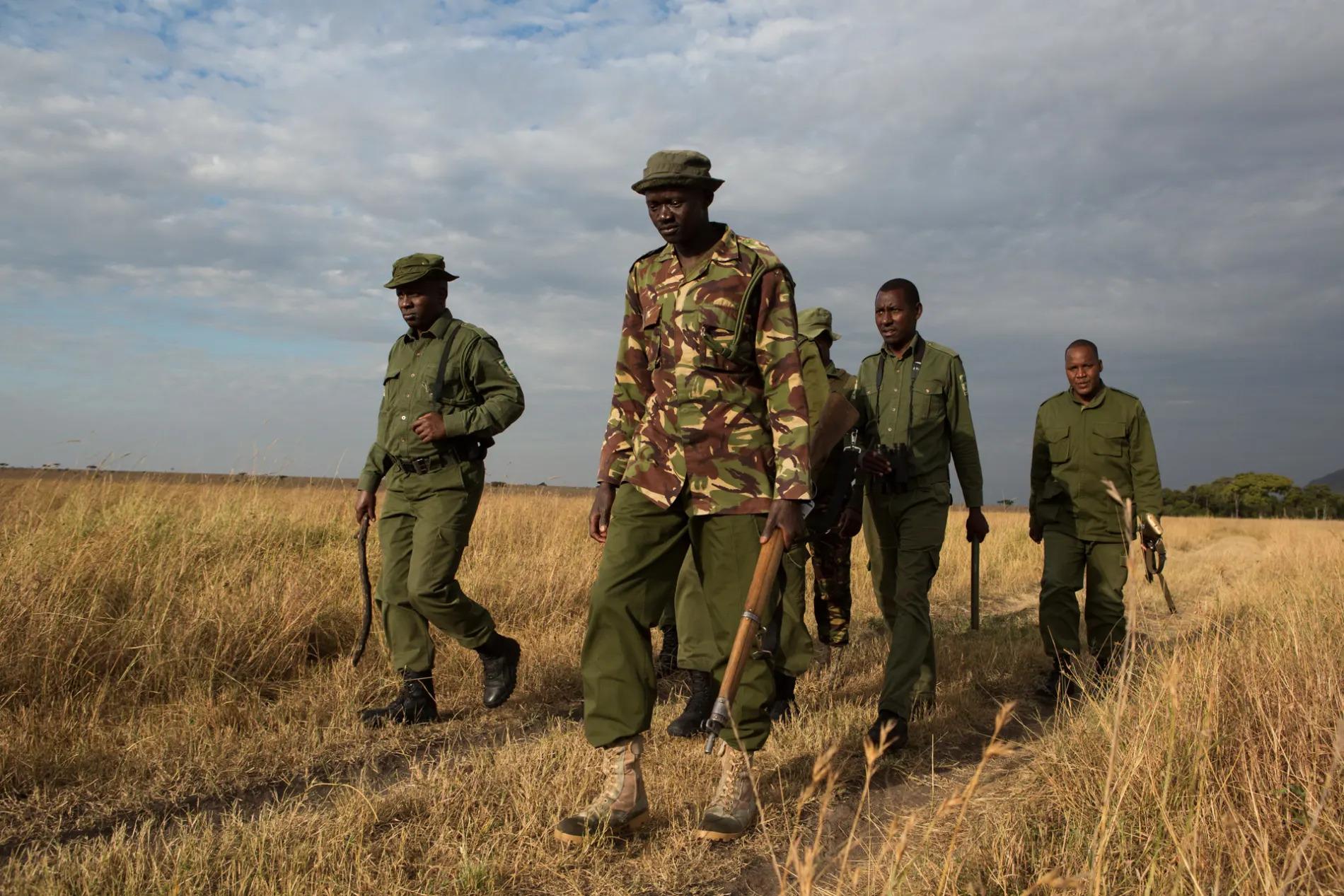 Anti poaching 2