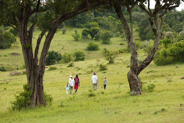 A family walk at Angama Mara