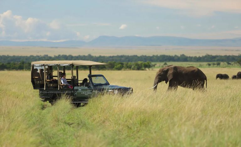 Game viewing at its best