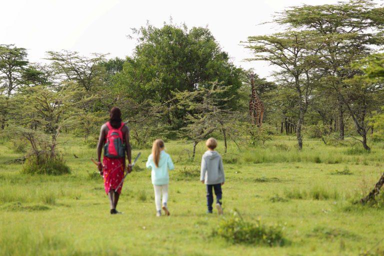 Walking safari for kids