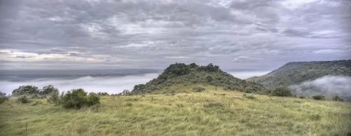 Angama Mara suspended in a sea of mist
