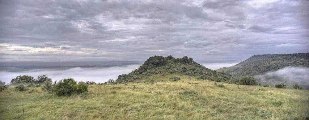angama-mara-in-the-mist