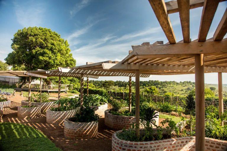 Kalabash Garden at Angama Lodge in Maasai Mara. Photographer Georgina Goodwin.
