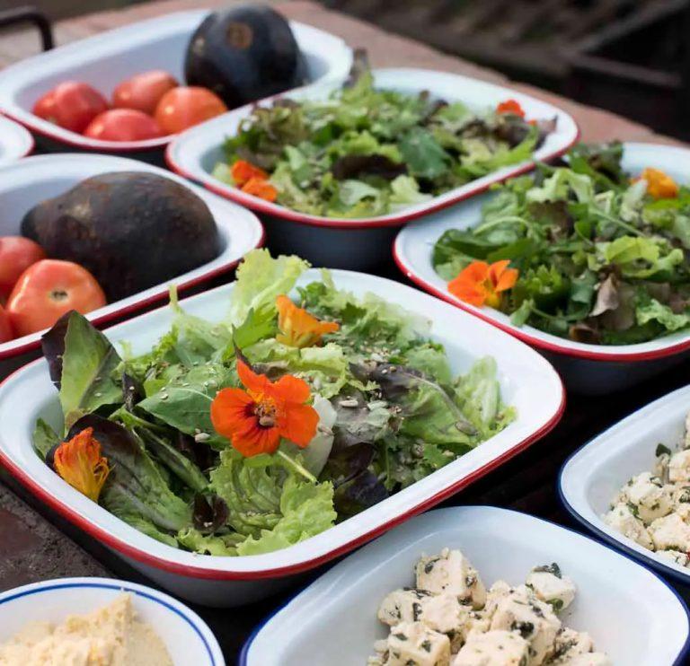 Fresh shamba salads for bush barbeque