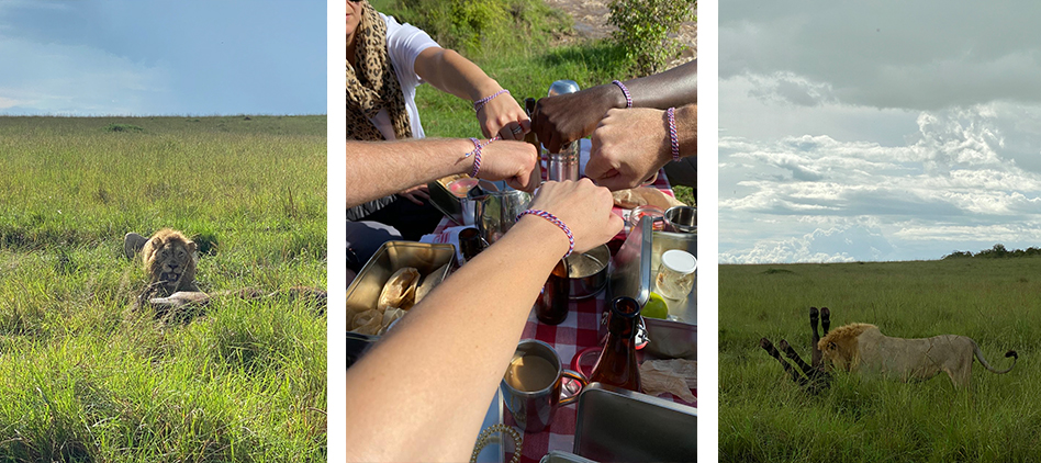Double Picnic Collage 3