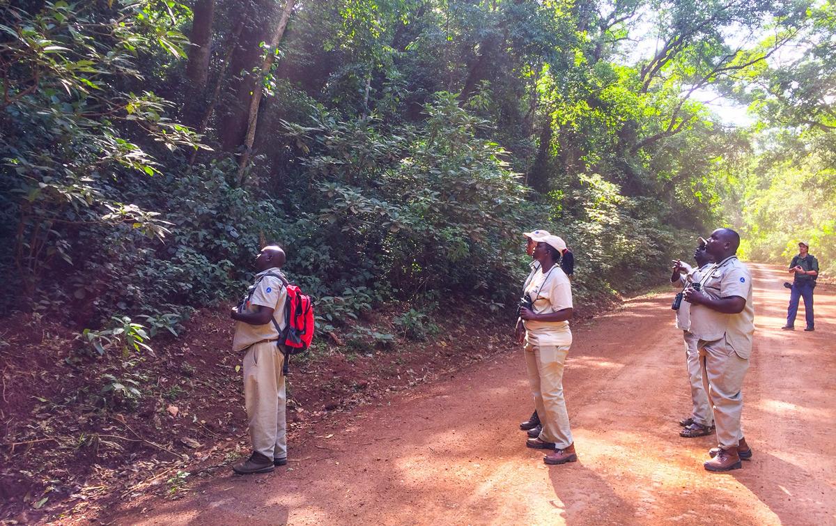 Exploring-Kakamega