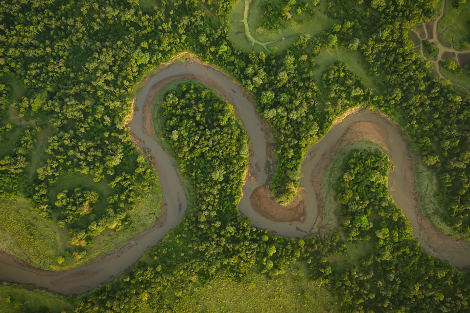 Mara River from above