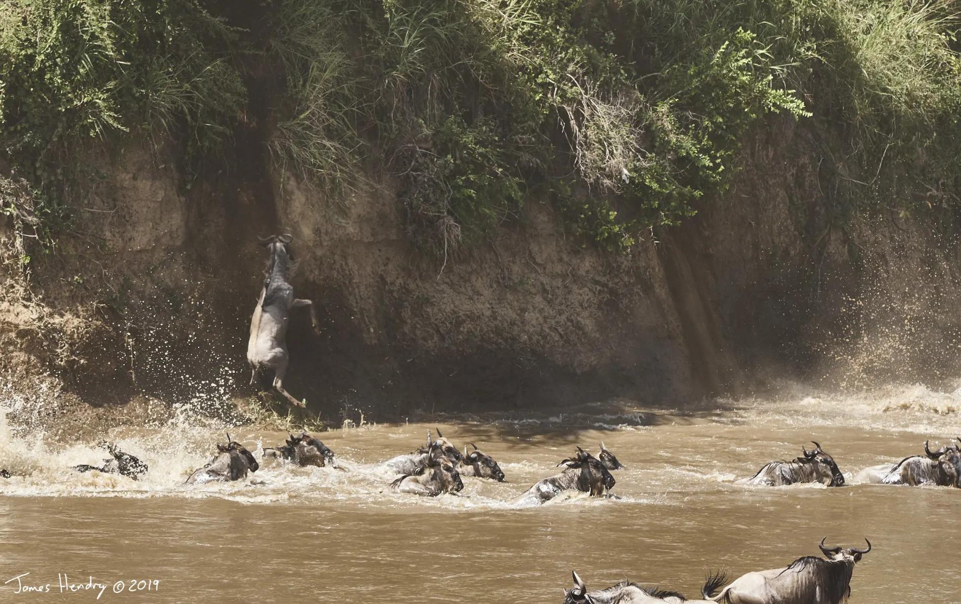 James Hendry_river crossing 2