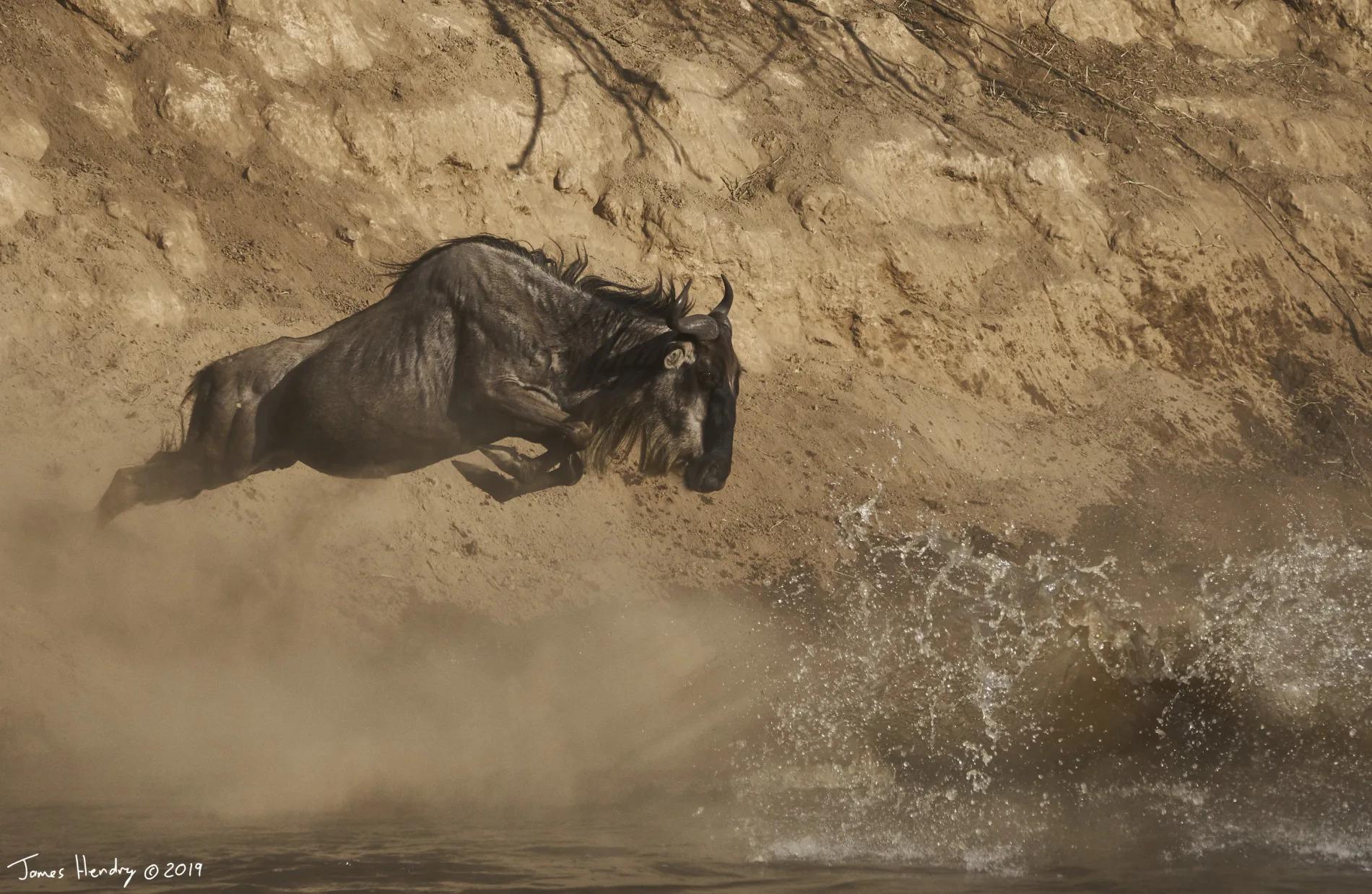 James Hendry_Lone wilde jump