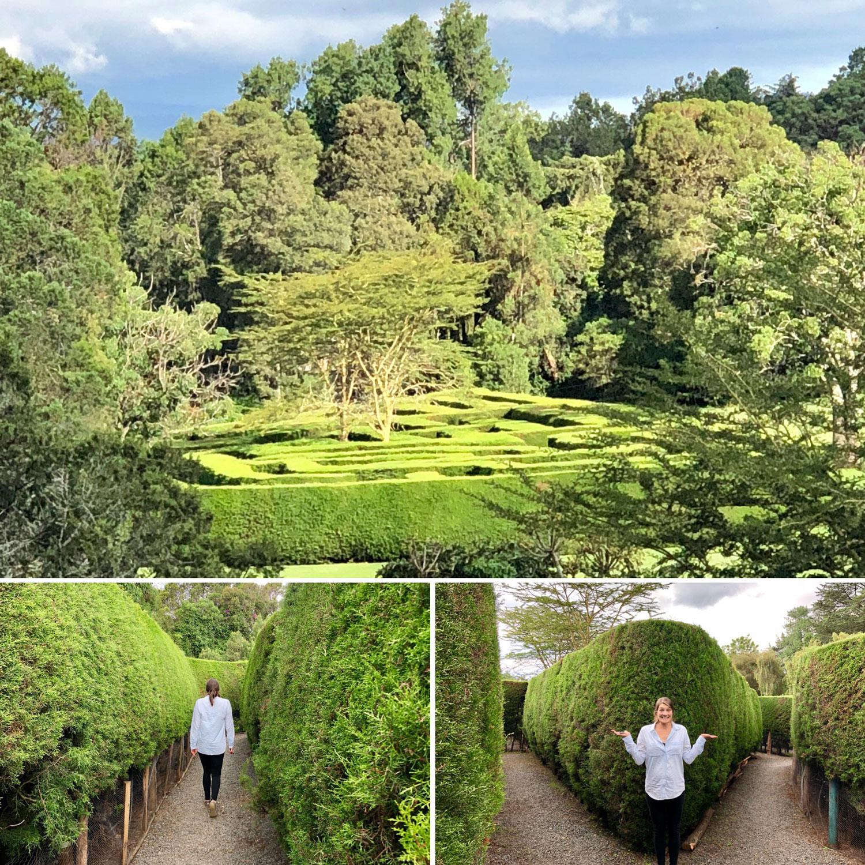 Maze at Kenya Safari Club