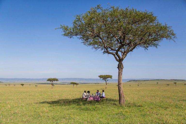 Angama Picnic in the Maasai Mara
