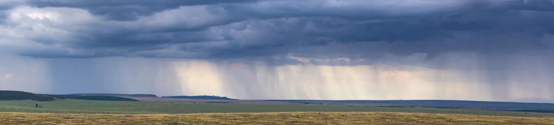 RAIN PANO