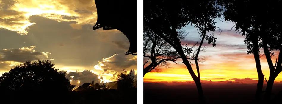 Sunset light at Angama