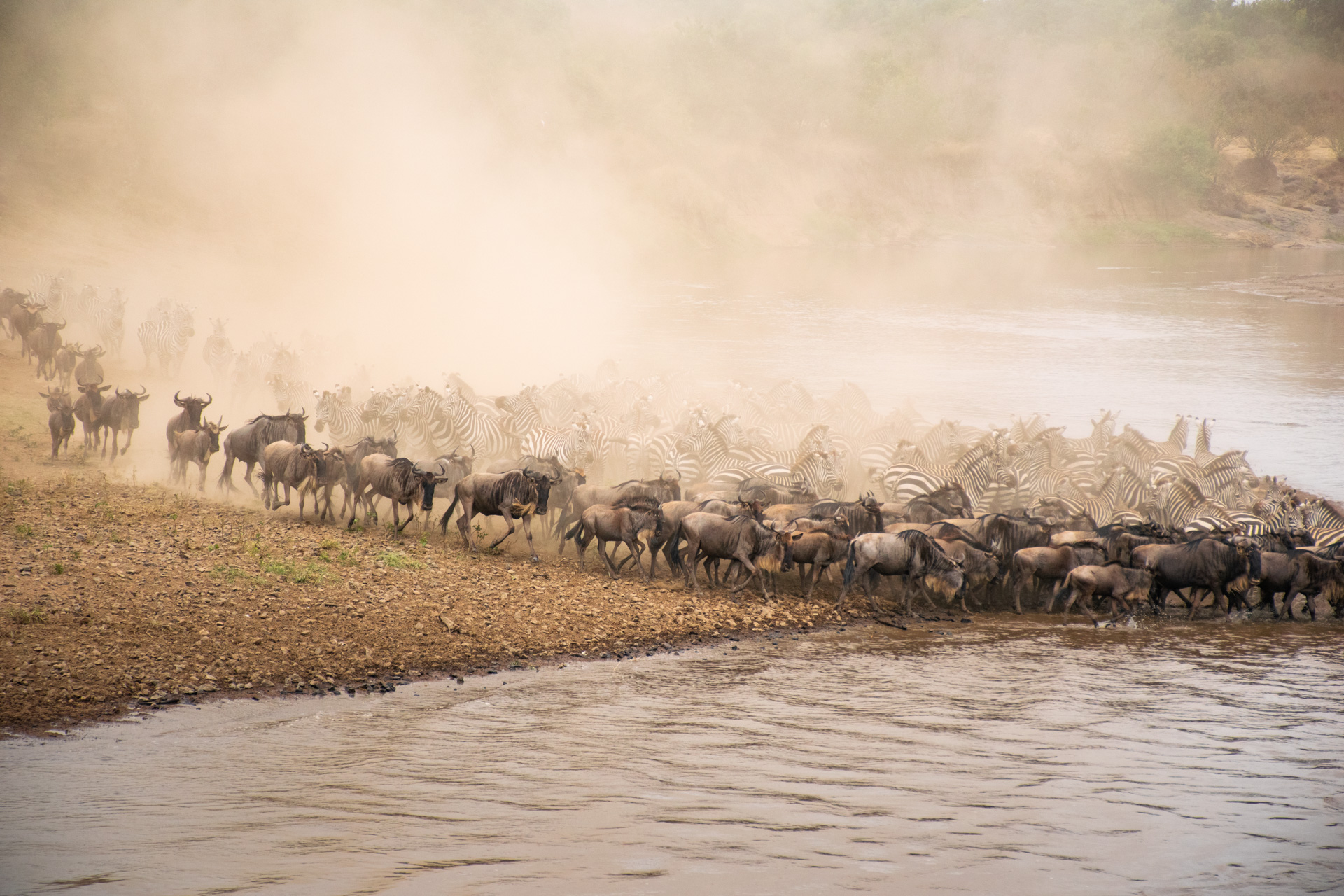Chaotic river crossing