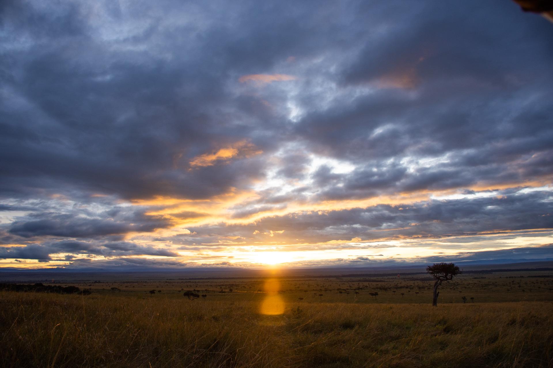Sunrise in the Mara
