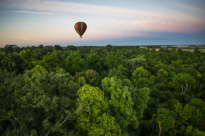 Hot Air Balloon Forest View Maasai Mara
