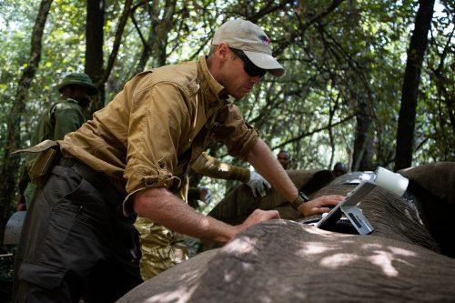 Mara elephant project at work – Adam Bannister