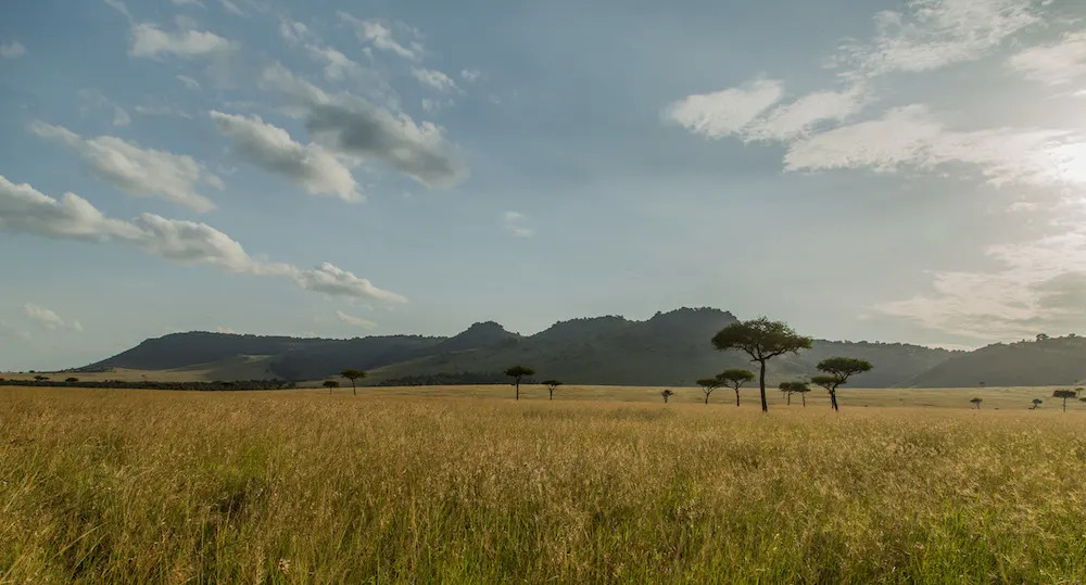 The Mara Triangle