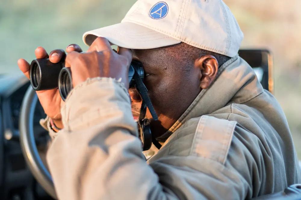 Wilson spotting a raptor