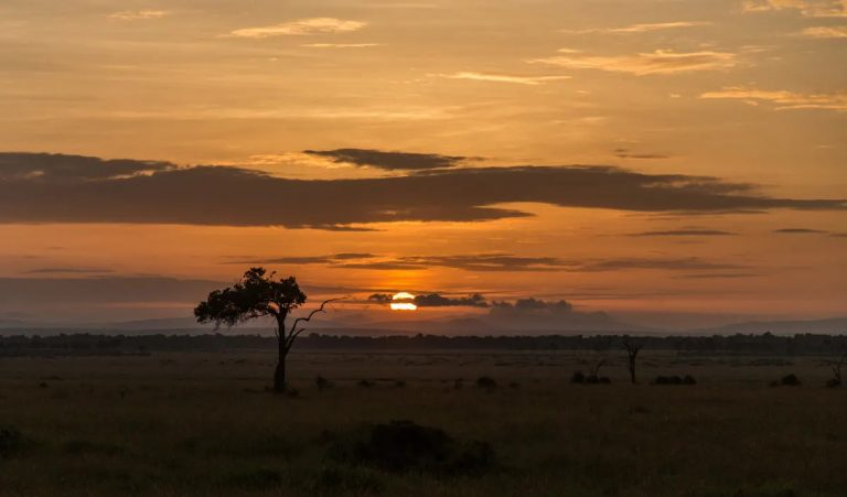 A Mara sunrise