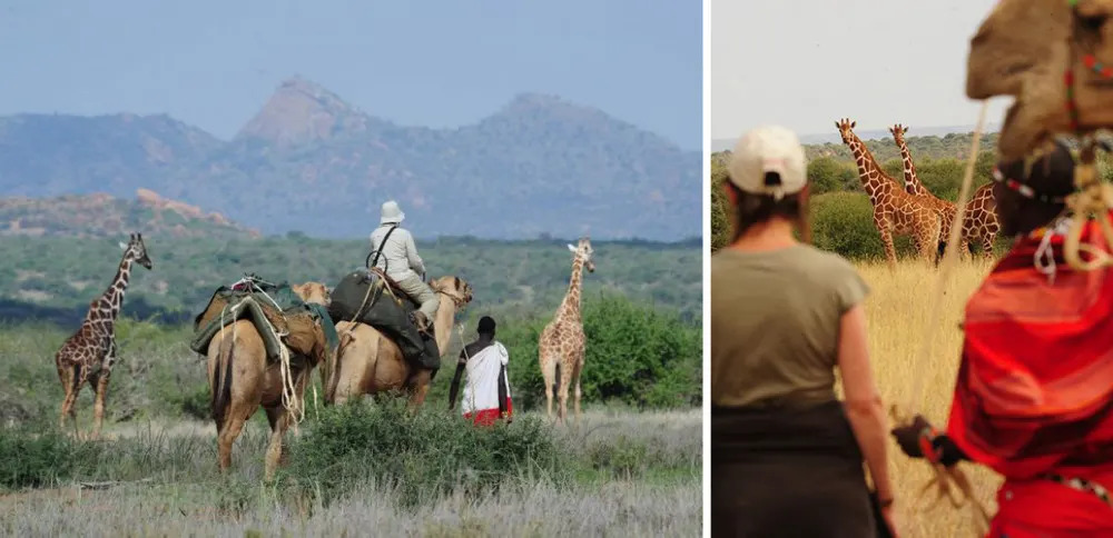 Karisia Walking Safaris Collage 1