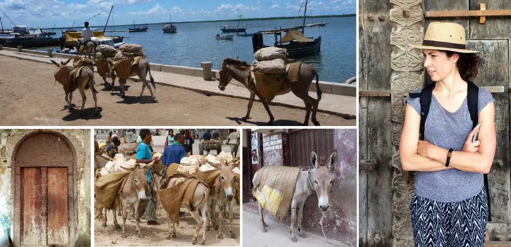 Lamu Collage 1