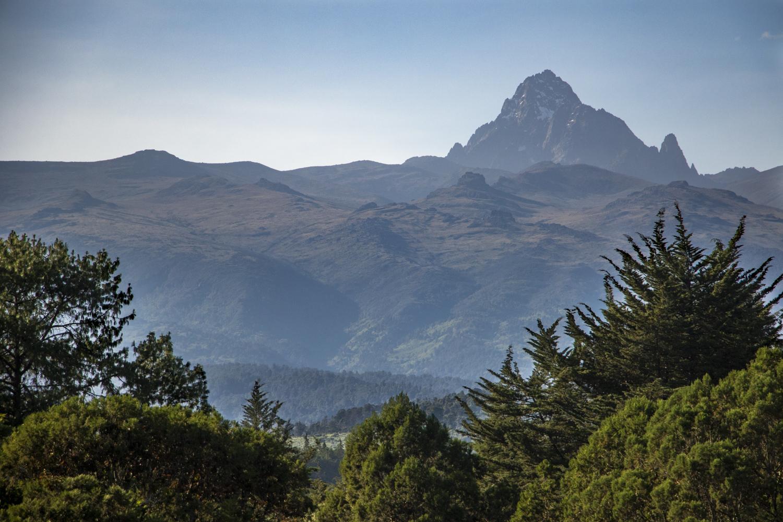 coy mountain kenya