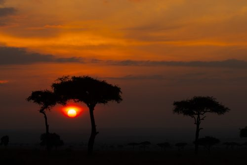 Another stunning start to the day in the Mara…