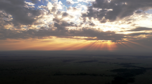 Dawn breaks over the Maasai Mara. Photograph by Adam Bannister