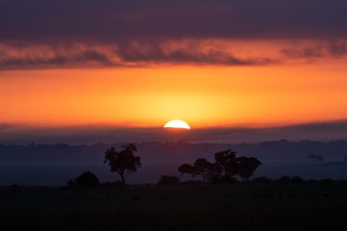 A spectacular golden sunrise in the Mara Triangle