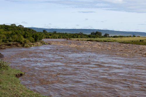 Mara River Main Crossing, 28 April 2020