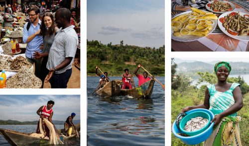Delicious fresh fish from Lake Kivu, a staple for many