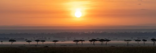 A beautiful sunrise panorama