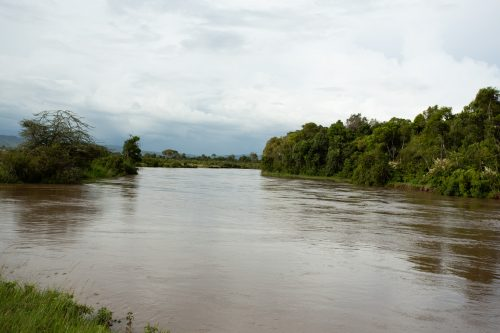 Mara River in flood - 5 February 2020