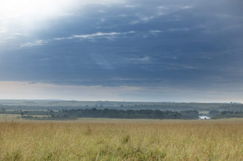 A typical Mara landscape