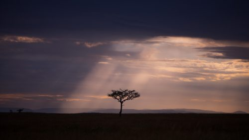 Dramatic clouds and lighting in the Mara at this time of year